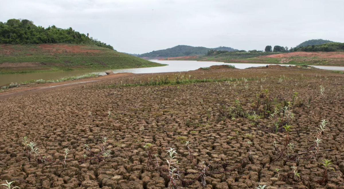 UE apoia com 65 milhões de euros três províncias angolanas afetadas pela seca