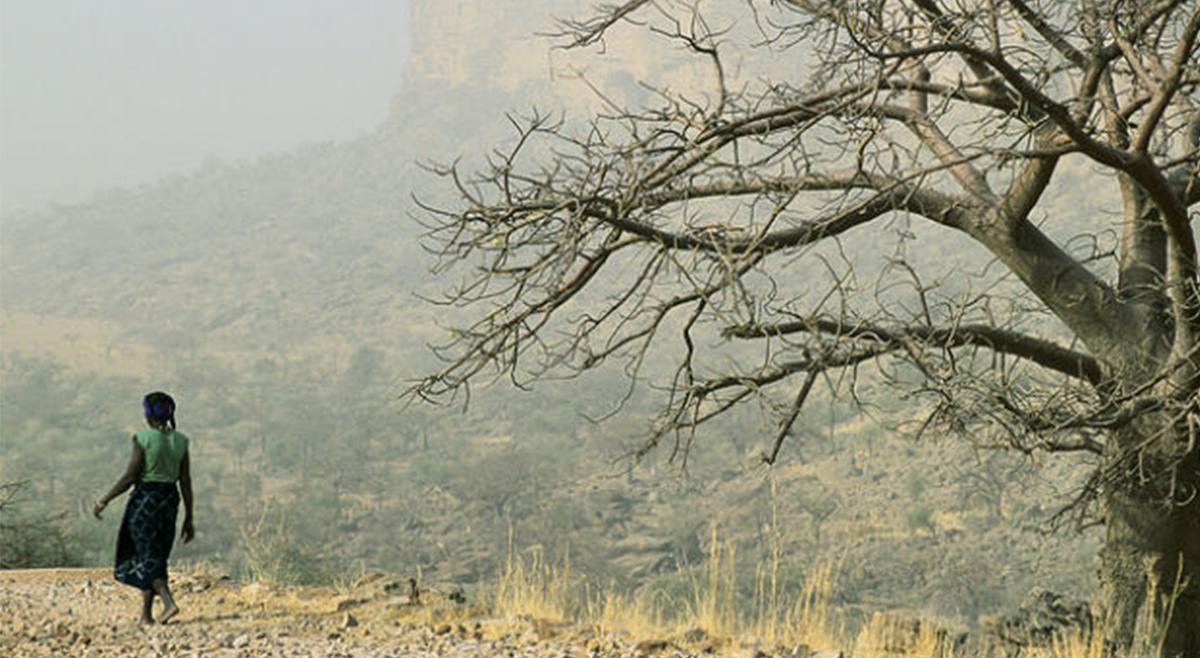 Seca no sul de Angola atinge mais de 1 milhão de pessoas