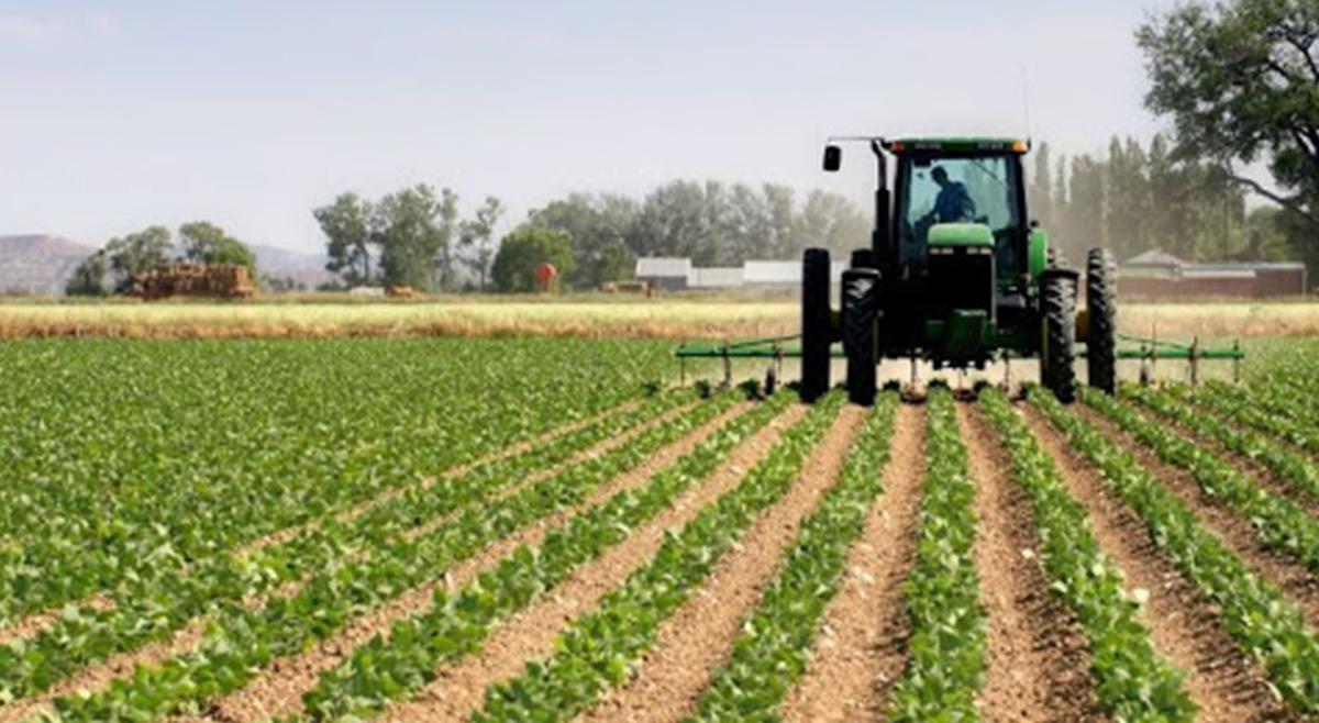 Agricultura familiar em Angola recebe apoios da União Europeia
