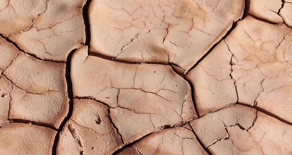 Seca e fome no sul de Angola ganham proporções alarmantes, diz ONG
